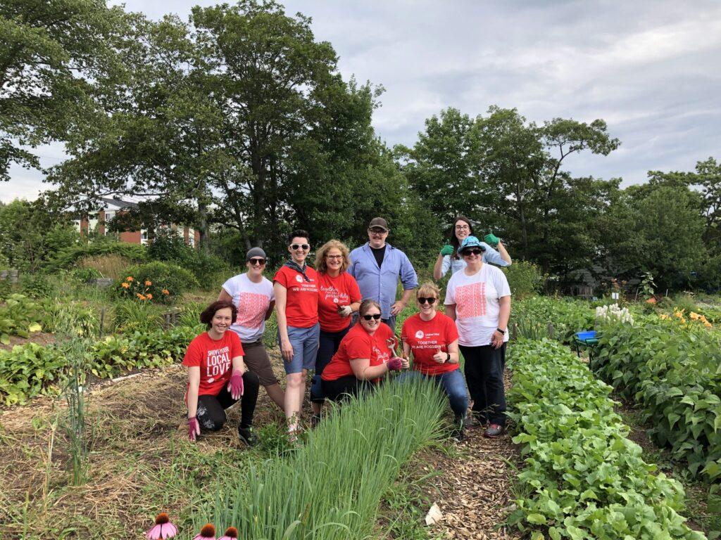 United Way staff lend a hand at a community partner's urban farm