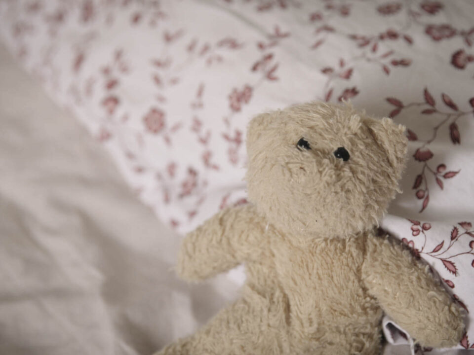Teddy bear with missing nose