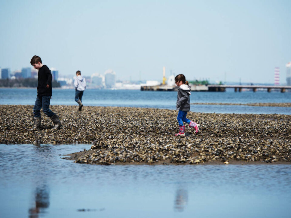 Three children walk on rocks along the shore of the Halifax Harbour