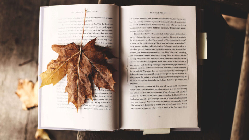 Open book with a maple leaf resting on one page