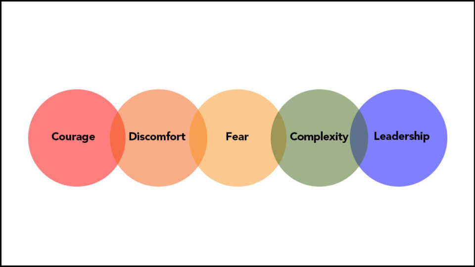 Coloured circles that read: courage discomfort fear complexity leadership