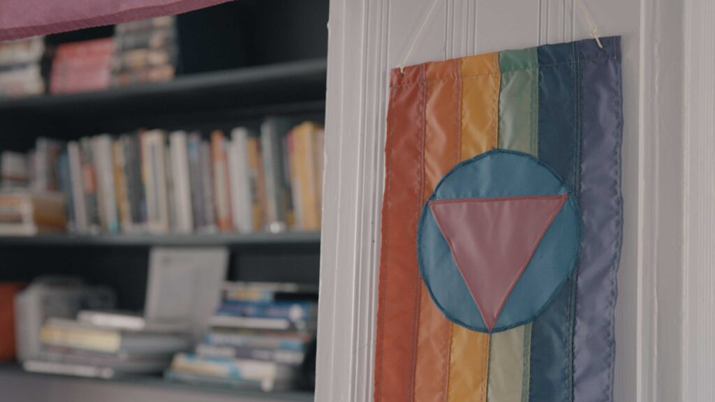 In the foreground, a pride flag with a blue circle and pink triangle in the middle. Background, books in a shelf